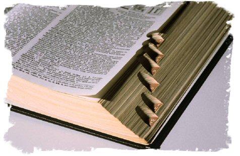 Website Terms Dictionary